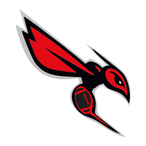 Schweinfurt Hornets